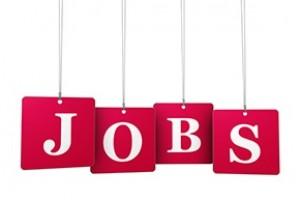 Noosa Jobs Day targets Coast boom