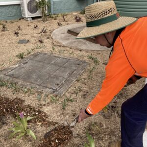 Stay-at-home Father Pursues his Passion for Horticulture